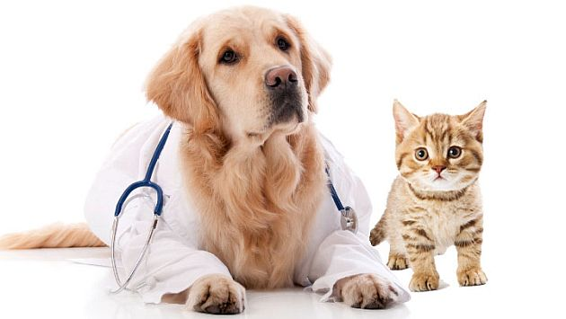 prodotti veterinari